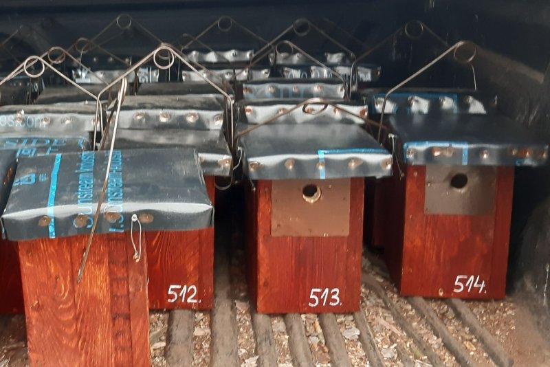 Kihelyezésre váró odúk (Fotó: Moharos Zsolt)