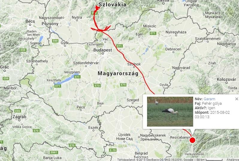 nagykáta térkép Megkezdődött a gólyavonulás | Magyar Madártani és Természetvédelmi  nagykáta térkép