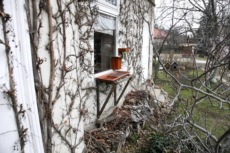 Keretes ablaketetőtálca (Fotó: Orbán Zoltán).