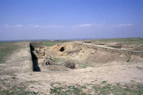 Partifecske telep a Fekete-tenger partvidékén, régészti ásatás gödrében (Fotó: Orbán Zoltán).