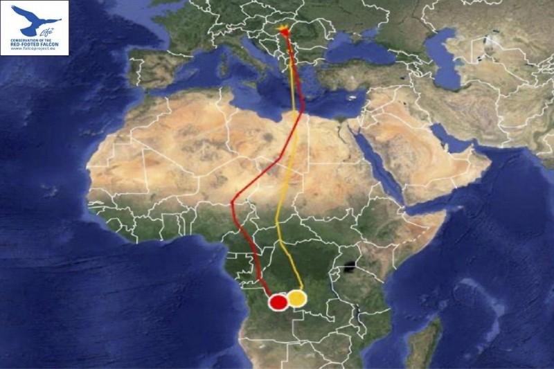 """""""Ági"""" és """"Ákos"""" vonulási útvonala. A friss adatokért katt a képre (Forrás: satellitetracking.eu)."""