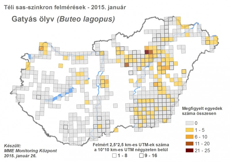 Gatyás ölyv megfigyelések - 2015. évi téli sasszinkron (forrás: MME Monitoring Központ).