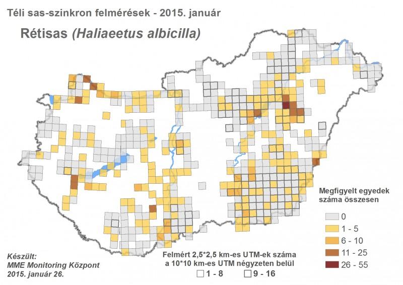 Rétisas megfigyelések - 2015. évi téli sasszinkron (forrás: MME Monitoring Központ).