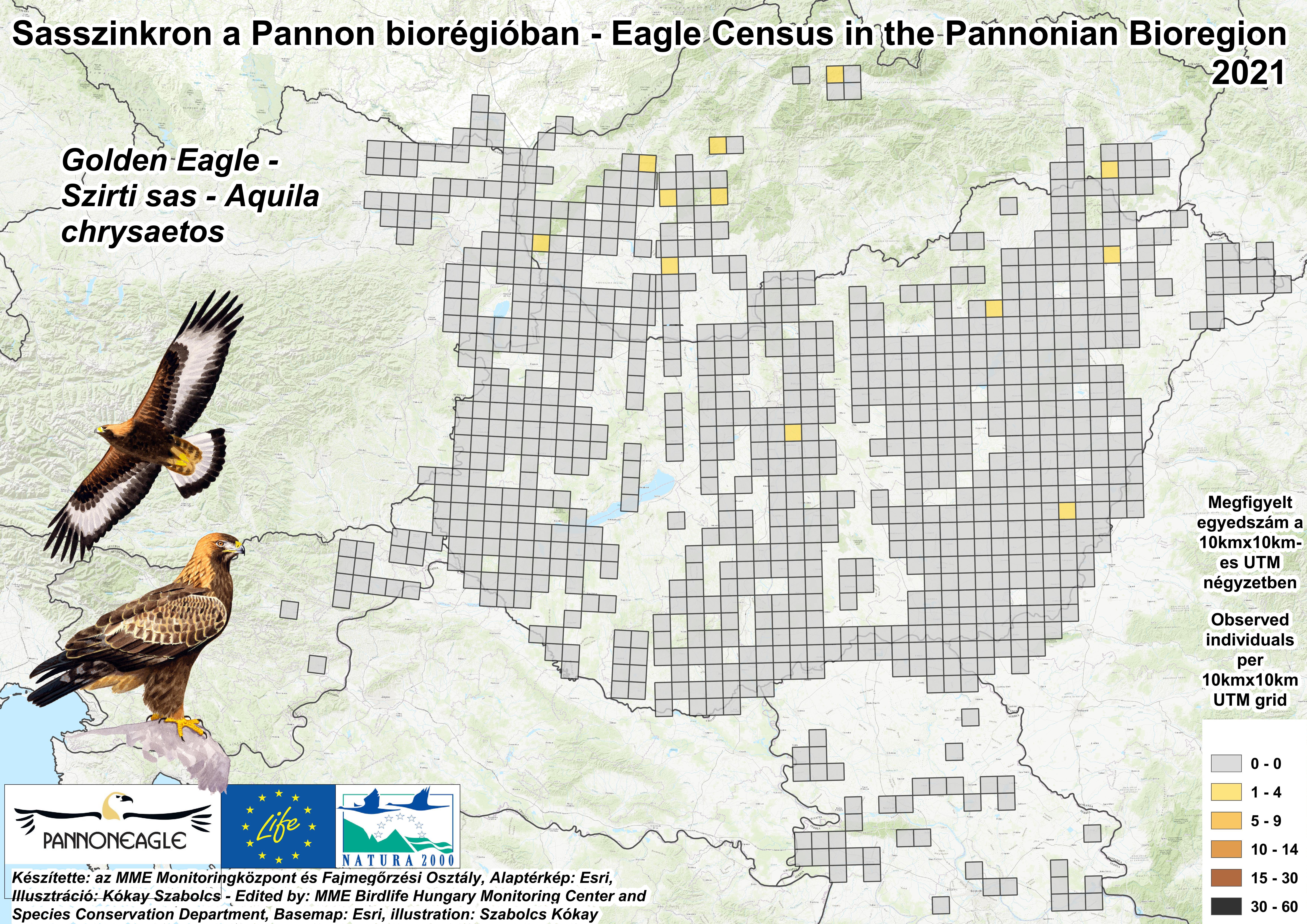 Szirti sasok megfigyelési adatai a a Pannon-régióban (Forrás: MME Monitoring Központ)
