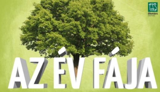 Az év fája logó (forrás: evfaja.okotars.hu)