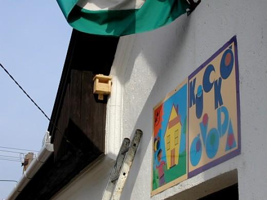 """""""C"""" típusú mesterséges madárodú egy óvoda épületén (Fotó: Orbán Zoltán)."""