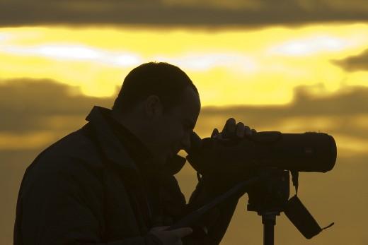 Teleszkópos madármegfigyelés (Fotó: Orbán Zoltán).