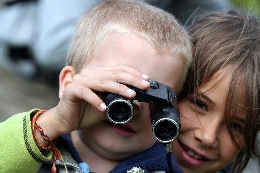 Európai Madármegfigyelő Napok (Fotó: Orbán Zoltán)