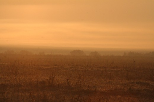 Hajnal Apajon (Fotó: Orbán Zoltán).