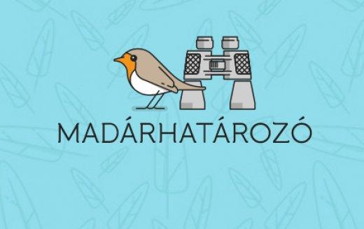 A madárhatározó ikonja
