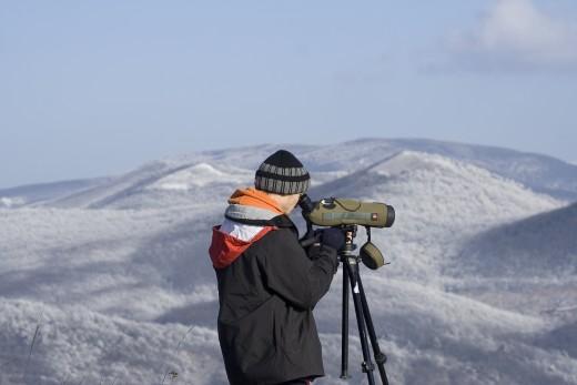 Téli madármegfigyelés (Fotó: Orbán Zoltán).