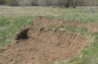 Egy kisebb homokfal a partifecskéknek (Fotó: Bebesi Zoltán)