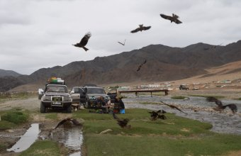 Altaj expedició (Fotó: Bagyura János)