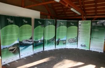 Rákosi vipera védelmi program mobil kiállítás (fotó: Halpern Bálint)