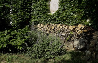 Természetvédelmi farakás (Fotó: Orbán Zoltán).