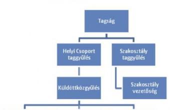 Az MME szervezeti felépítésének választási folyamatábrája (EB = Ellenőrző Bizottság, FB = Fegyelmi Bizottság).