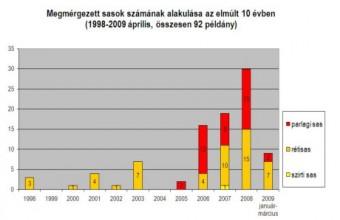 Sasmérgezések száma Magyarországon 1998-2009 között