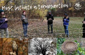 Őszi kirándulás (Fotók: Péter Judit, Orbán Zoltán, Benedek Veronika)