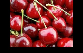 cseresznye (forrás:edenkert.hu)