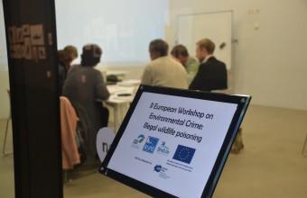 Munkacsoporti megbeszélés a konferencián (Fotó: SEO).