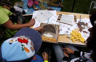 Az MME Natura 2000 játéksorozatának néhány eleme (Fotó: Orbán Zoltán).