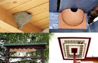 A tavasz közeledtével még van idő kihelyezni a műfészkeket, megtervezni és engedélyeztetni a fecskebarát falfelújítást, felszerelni a fecskepelenkákat (Fotók: Orbán Zoltán)