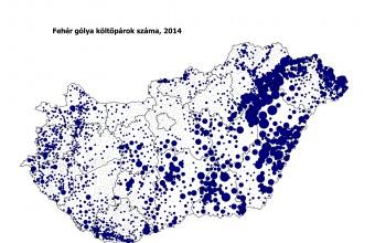 A fészkelő fehérgólya-állomány területi eloszlása Magyarországon a 2014. évi felmérés adatai alapján (Forrás: MME Monitoring Központ).