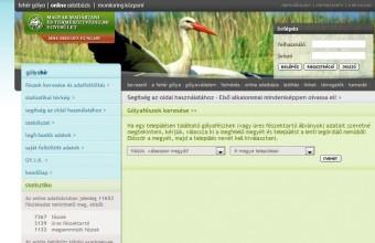 gólya adatbázis