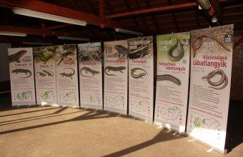 A vándorkiállítás 8 panelből áll és önállóan is felállítható, úgynevezett rollupokra nyomtattuk.