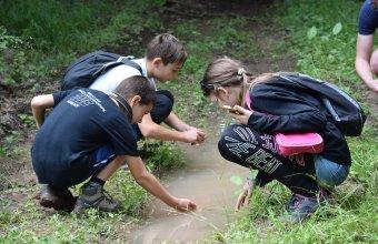 Az időszakos vízek átvizsgálása tábori feladat volt (fotó: Babocsay Gergely)