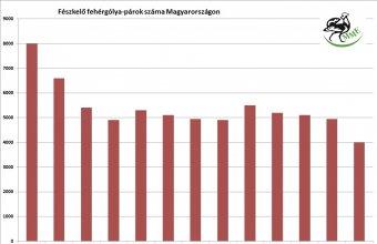 A fehér gólya fészkelő állományának alakulása Magyarországon 1958-2019 között (Forrás: MME Monitoring Központ)