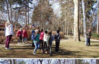 Tavaszi odútakarítás  Siófokon a Jókai-parkban