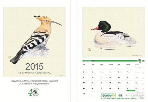 Az MME 2015. évi falinaptára a címlappal és november hónappal (Grafikák: Kókay Szabolcs).